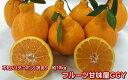 全国お取り寄せグルメ熊本食品全体No.11