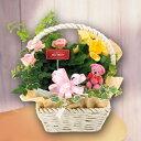 お花の寄せカゴスクエアーアレンジバスケット【母の日寄せカゴアレンジ2018ギフトプレゼント鉢花】