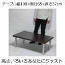ローテーブル 幅100×奥行き65×高さ37cm ダークブラウン(シルバー脚)