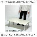 ローテーブル 幅120×奥行き75×高さ37cm ホワイト(シルバー脚)