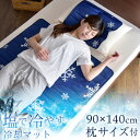 ★300円クーポン★枕サイズ付【送料無料】 塩 ジェル 冷却...
