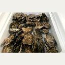 【ふるさと納税】10-97 生牡蠣 中サイズ 約2.8kg(...