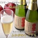 【ふるさと納税】S010126 ふかがわシードルフルボトル(750ml×3本)