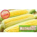 【ふるさと納税】≪石橋農園≫黄色とうもろこし【恵味】10本(L-LL) 【野菜・とうもろこし・セット・詰合せ】 お届け:2020年8月上旬〜9月上旬まで