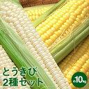 【ふるさと納税】道塚農園のロイシーコーン&サニーショコラ2種とうきびセット 約1