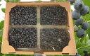 【ふるさと納税】農園の加工用ブルーベリー約2kg(北海道仁木町産) 【果物詰合せ・フルーツ】 お届け:2019年8月1日〜8月17日まで