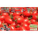 ショッピングトマト 【ふるさと納税】超完熟ミニトマト【アイコ】大満足のたっぷり3kg 【野菜・ミニトマト】 お届け:2020年7月上旬〜9月上旬