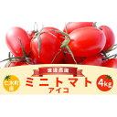 ふるさと納税北海道仁木町産ミニトマトアイ