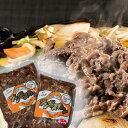 【ふるさと納税】[K-02y]肉のいけだの手作り「特製・味付」ジンギスカン3.0kg
