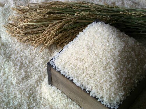 【ふるさと納税】「豊作米(R)」ななつぼし3か月コース(※平成30年12月〜発送予定)