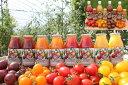 【ふるさと納税】まるほり野菜園 カラフルミニトマトジュースセットE