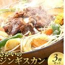 【ふるさと納税】さかいのジンギスカン 3種セット 【肉の加工...