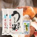 ショッピング無洗米 【ふるさと納税】[R01A13]令和元年産うりゅう米ゆめぴりか 無洗米5kg×2袋、アラー!!カンタン 1個