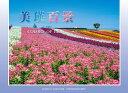 【ふるさと納税】[003-04]写真家 菊地晴夫 ポストカー...