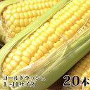【ふるさと納税】朝採りとうもろこし【ゴールドラッシュ】20本...
