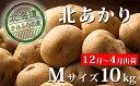 【ふるさと納税】越冬じゃがいも【北あかり】約10kg≪北海道...