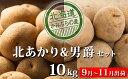 【ふるさと納税】新じゃがいも2種食べ比べセット約10kg≪北...