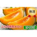 【ふるさと納税】ふらの赤肉メロン【検選】Lサイズ2玉セット 【果物類・フルーツ・くだもの・北海道産】