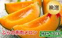 【ふるさと納税】ふらの赤肉メロン【検選】特4サイズ2玉セット...