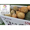 【ふるさと納税】かみふらの産秋野菜(じゃがいも・玉葱・かぼち...