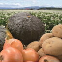 【ふるさと納税】農産物「10kg」セット