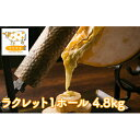 【ふるさと納税】北海道美深町 牧場のラクレット1ホール 4.8kg【北ぎゅう舎】 【加工食品・乳製品・チーズ】