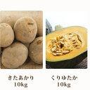 【ふるさと納税】北海道 美深町産 かぼちゃ10kg・じゃがい...