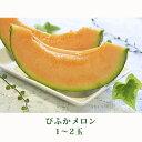 【ふるさと納税】北海道 美深町産 びふかメロン 1〜2玉 【...