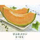 【ふるさと納税】北海道 美深町産 びふかメロン 4玉〜6玉 ...