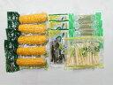 【ふるさと納税】A32 北海道山菜ギフトセット2