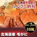 【ふるさと納税】【数量限定】北海道産 毛...