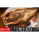 【ふるさと納税】北海道オホーツク産 開き真ほっけ特大4尾 【...