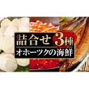 【ふるさと納税】オホーツクの海鮮詰合せ 【定期便・生牡蠣・かき・魚貝類・帆立・ホタテ・いくら・魚卵】