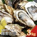 【ふるさと納税】 湧別サロマ湖産龍宮牡蠣3kg 【魚貝類・生...