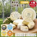 【ふるさと納税】夢民舎 はやきたチーズ詰合せ【1000073】