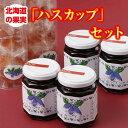 【ふるさと納税】A42-3 北海道の果実「ハスカップ」セ