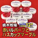 【ふるさと納税】A031-5赤いルバーブとハスカップマーブルアイス<120ml×12個>...