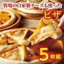 【ふるさと納税】A31-3 ハッピネスピザ5枚組