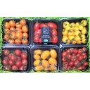 ふるさと納税減農薬ミニトマト彩り4種詰合