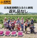 【ふるさと納税】北海道浦幌町への寄付(返礼品なし)お礼のお手紙をお届けします