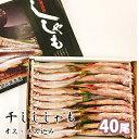 【ふるさと納税】干しししゃも オス・メス込40尾入 【魚貝類...