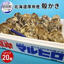 【ふるさと納税】厚岸産殻かきL20個セット 【魚貝類・生牡蠣...