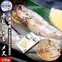 【ふるさと納税】北海道産 干ししゃも メス40尾 【魚貝類】...