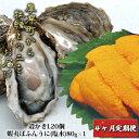 【ふるさと納税】厚岸町から牡蠣とウニをお届け【4ヶ月定期便】...