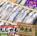 今なら「鮭とばイチロー100g」プレゼント【ふるさと納税】し...