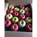 【ふるさと納税】【令和3年11月下旬発送開始】りんご バラエティ詰め合わせ 約5kg(家庭用)_A2-825【1118135】