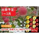 【ふるさと納税】1~3月リンゴのふくさわ 最高等級「特選大玉」3種詰め合わせ約5kg(サンふじ・金星・王林)【弘前市産・青森りんご】 【果物類・林檎・りんご・リンゴ】 お届け:2021年1月6日~2021年3月31日