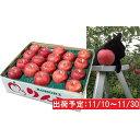 【ふるさと納税】11月 土岐りんご園 サンふじ約5kg秀 五...