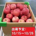 【ふるさと納税】【年内】津軽産不揃い家庭用りんご約10kg ...