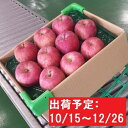 【ふるさと納税】【年内】津軽産りんご6kg(3kg×2箱)ご...